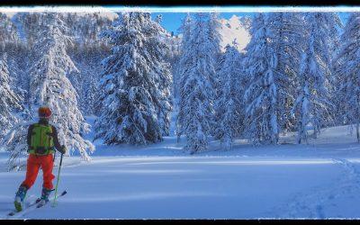 De la neige comme mise en bouche
